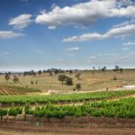 Hunter Valley, NSW